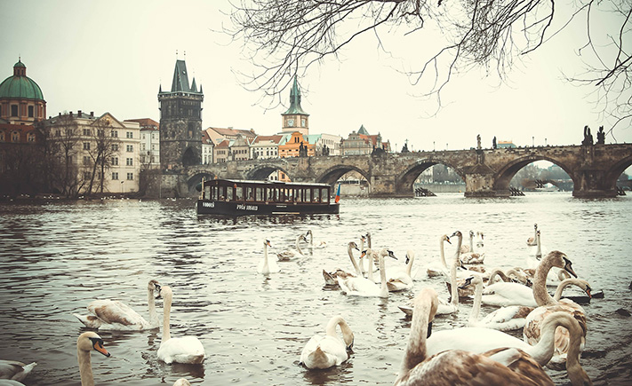 Kinh nghiệm xin visa Séc