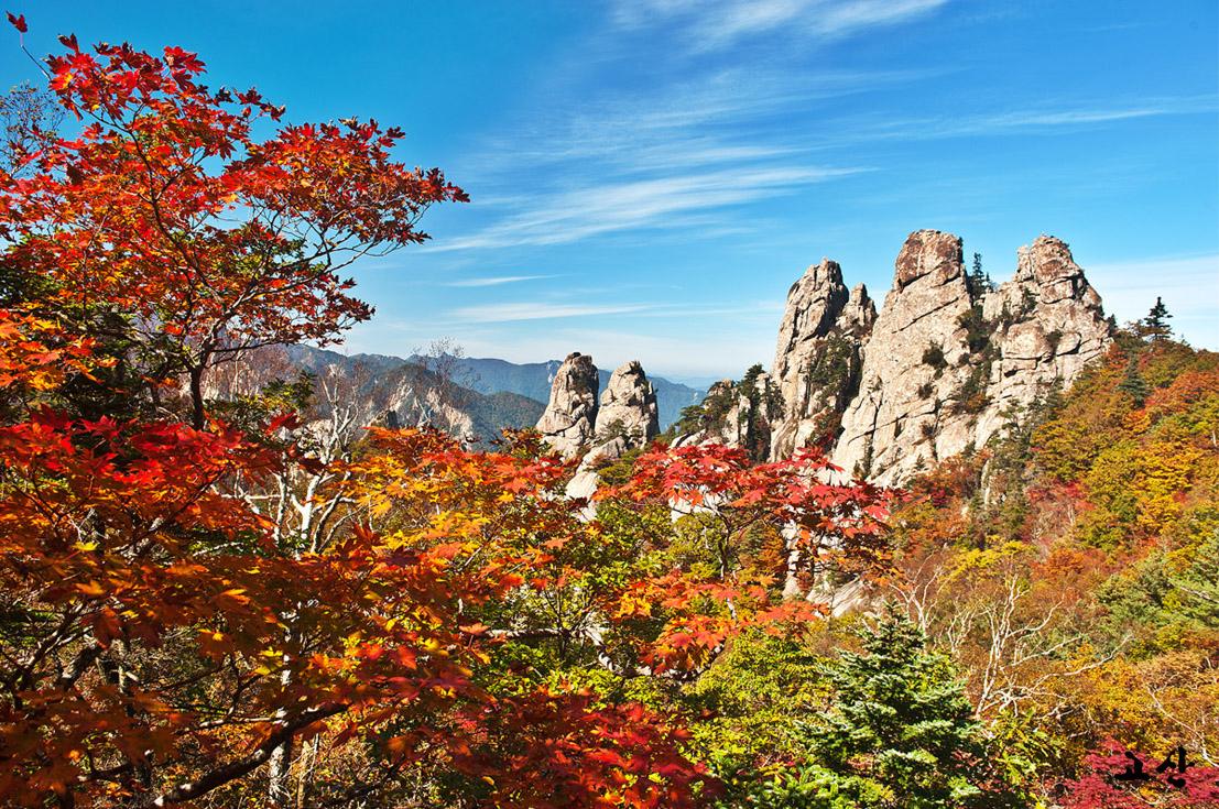 Du lịch Hàn Quốc tự túc