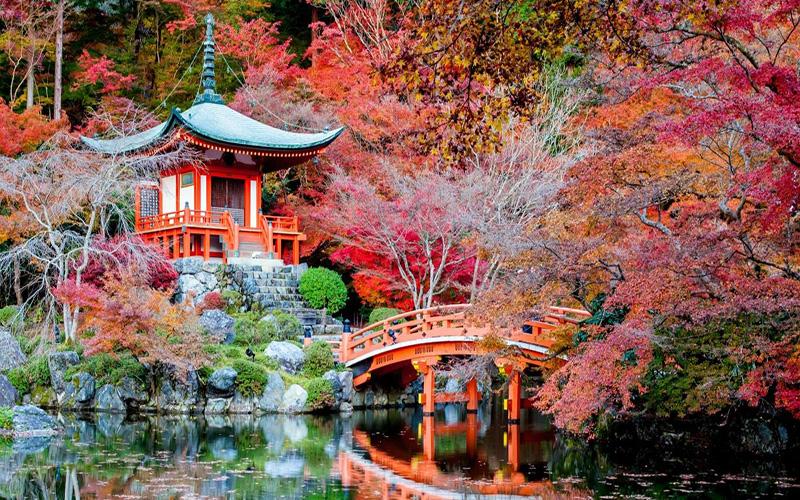 Hồ sơ xin visa Nhật Bản