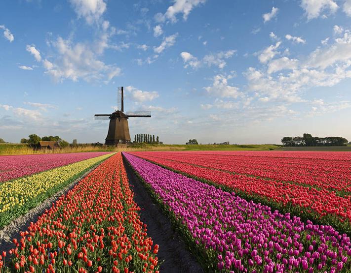 Kinh nghiệm du lịch Hà Lan