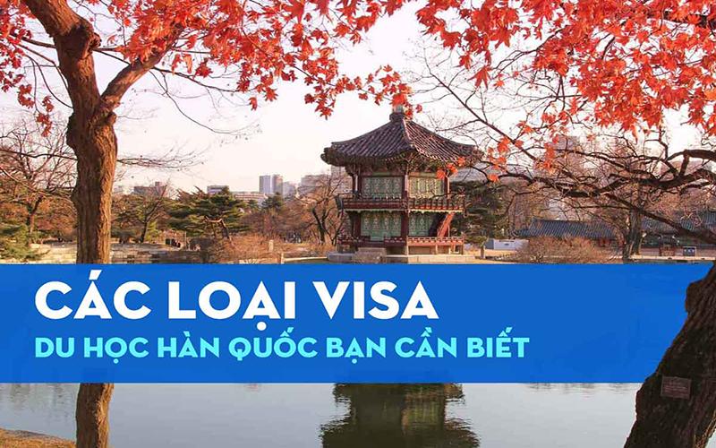 những loại visa du học Hàn Quốc cập nhật chi tiết và mới nhất