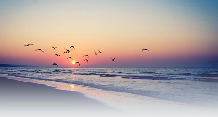 bãi biển bangladesh