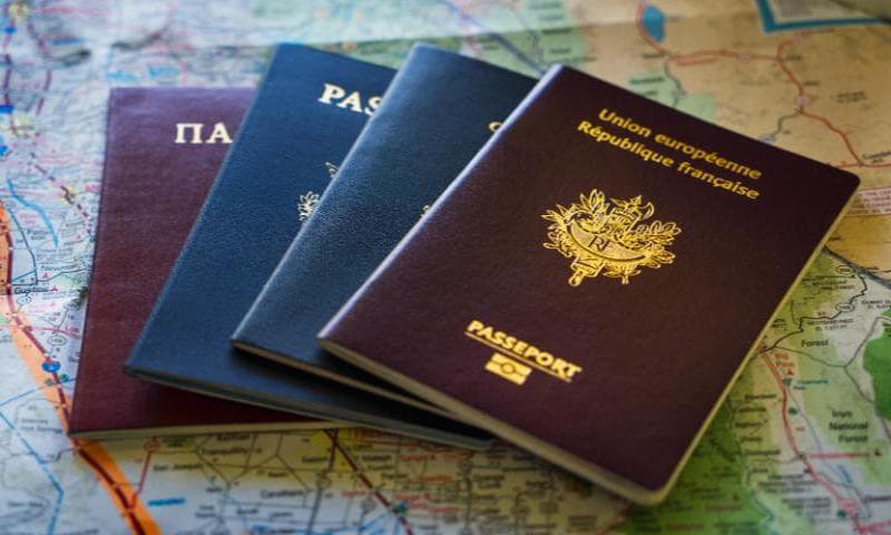 hộ chiếu loại p là gì